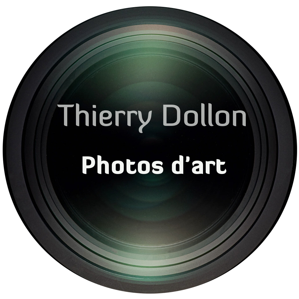 Photos d'art de Thierry Dollon