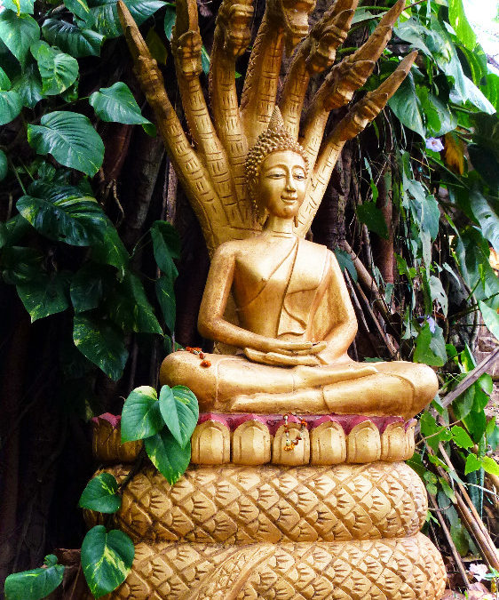 Photographies couleur : Buddha | Thierry Dollon